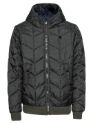 G-STAR RAW, Heren Winterjas 'Whistler meefic quilted hdd bomber', donk...
